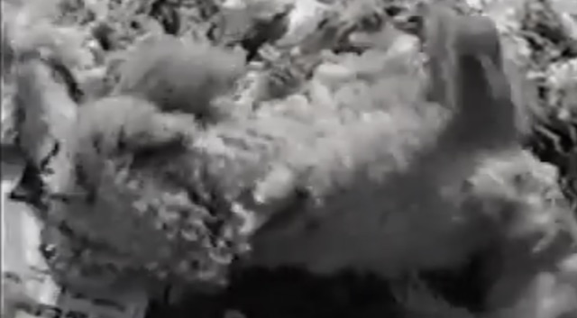 In the wool pile